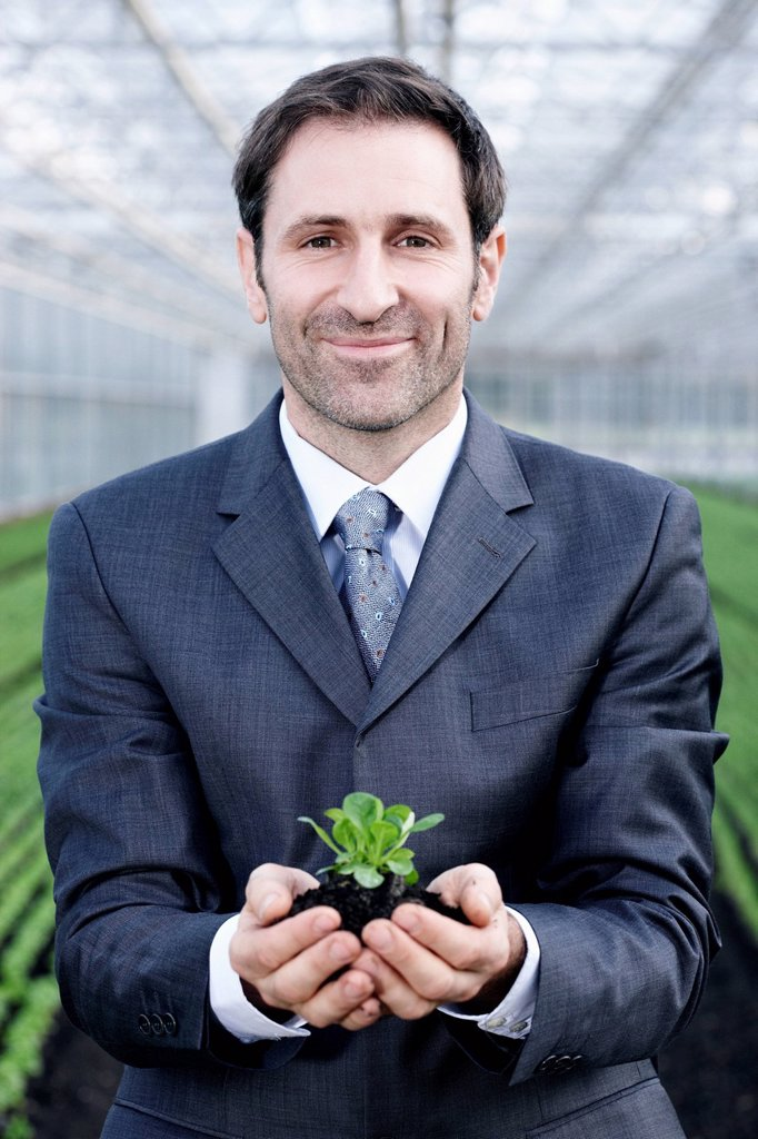 Germany, Bavaria, Munich, Mature man in greenhouse with corn salad : Stock Photo