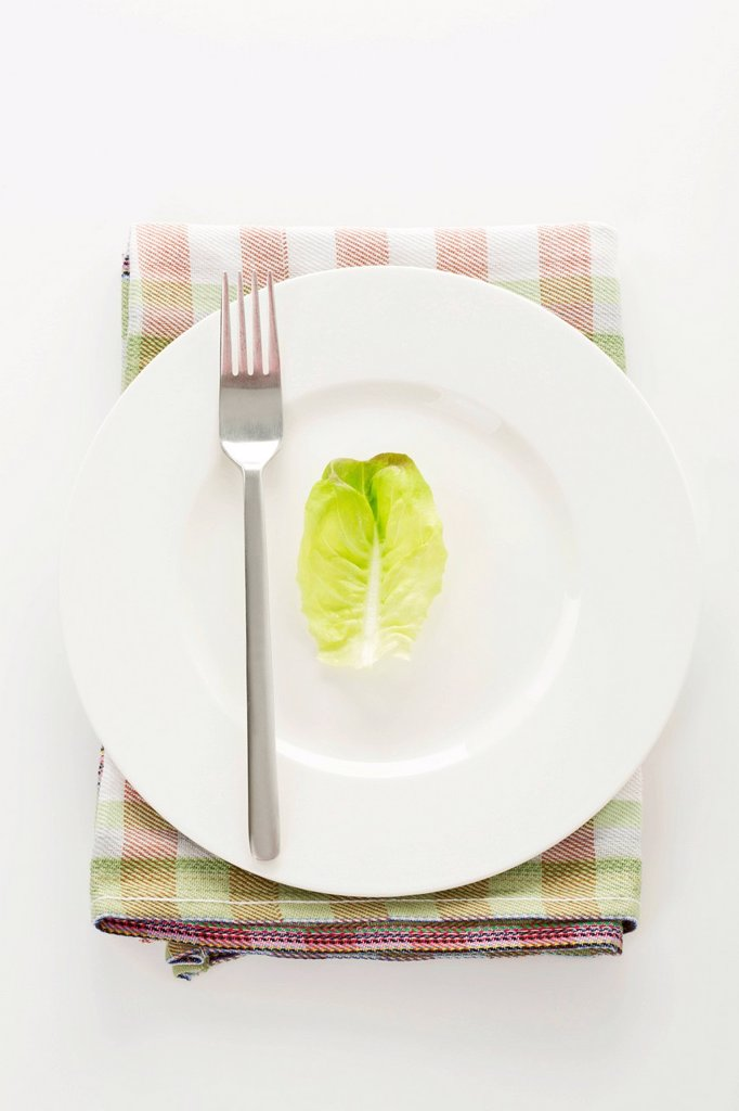 Stock Photo: 1815R-122741 Lettuce leaf on plate with fork, close up