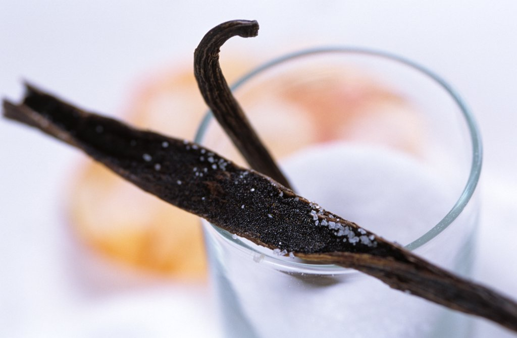 vanilla beans, close up : Stock Photo
