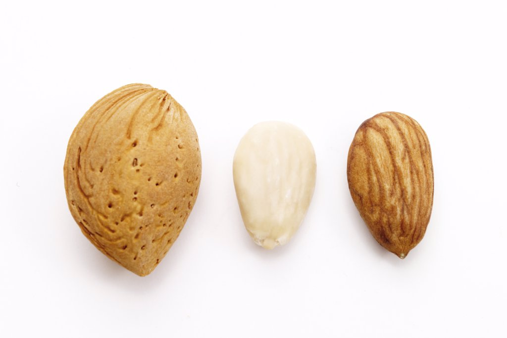 Stock Photo: 1815R-12425 Almond, close-up
