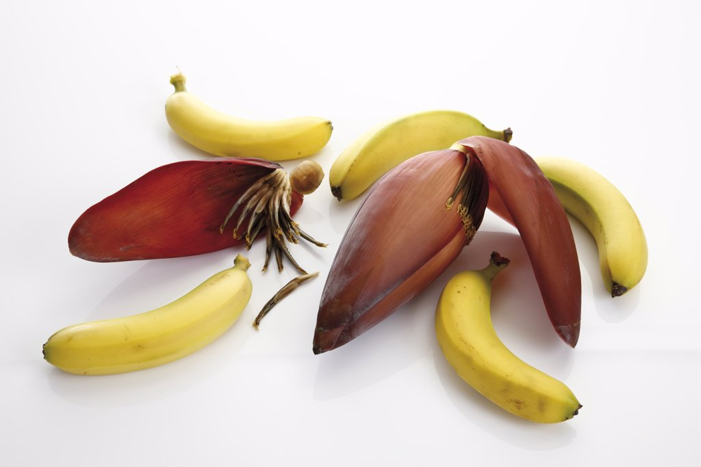 Stock Photo: 1815R-16312 Banana flower and bananas, elevated view