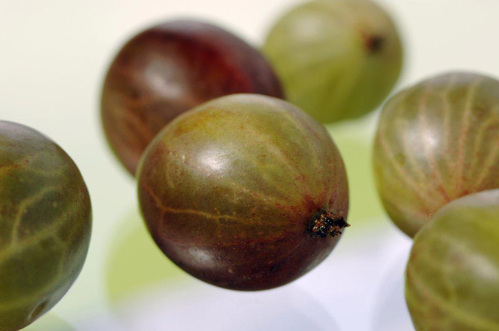 Gooseberries : Stock Photo