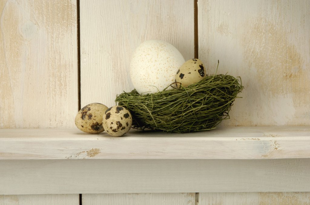 Stock Photo: 1815R-2072 Easter eggs lying on nest at shelf, close-up