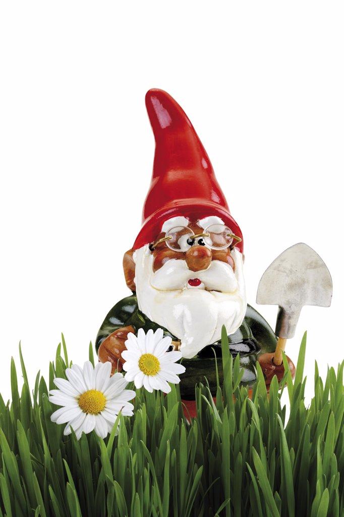 Garden gnome with spade, grass in foreground : Stock Photo
