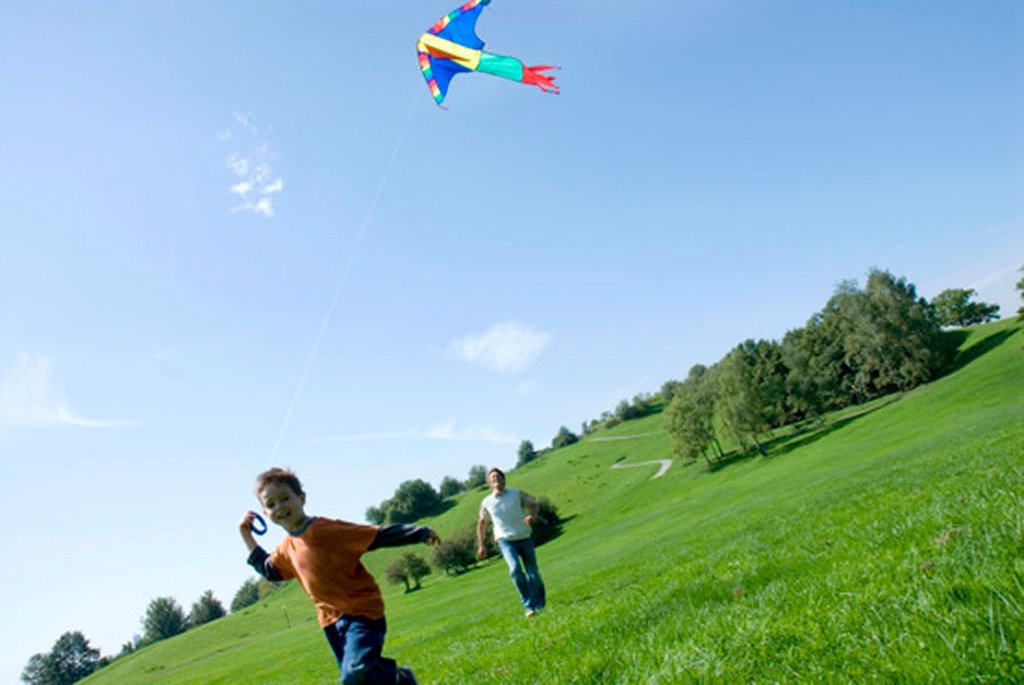 Father and son flying a kite : Stock Photo