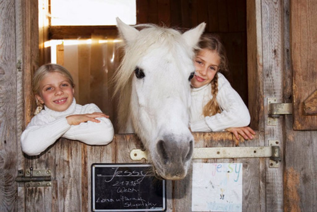 Two girls with horse in stable, portrait : Stock Photo
