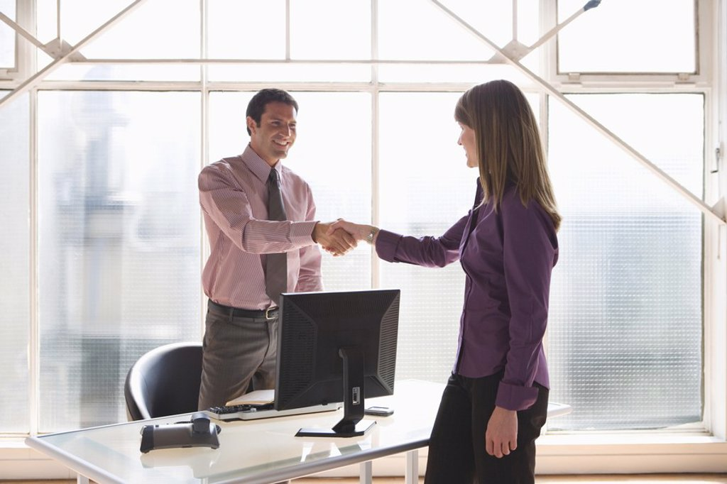 Businesspeople shaking hands : Stock Photo