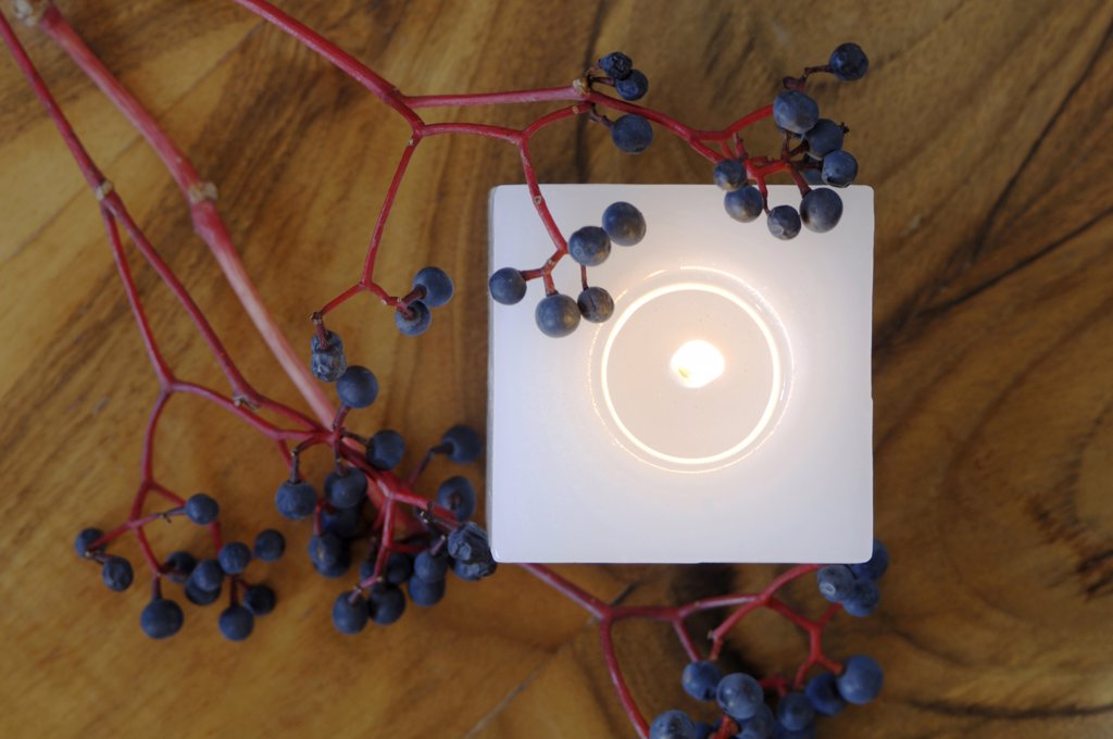 Stock Photo: 1815R-3052 Burning candle and twig with elderberries