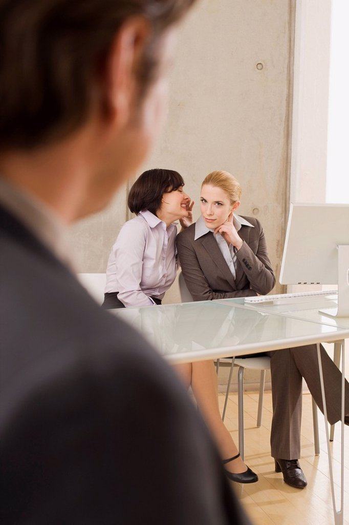 Business people in a meeting : Stock Photo