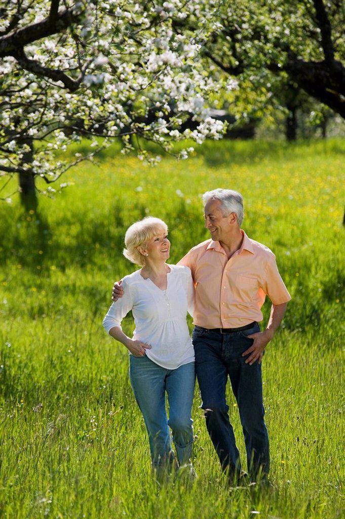 Stock Photo: 1815R-31439 Germany, Baden Württemberg, Tübingen, Senior couple walking across field