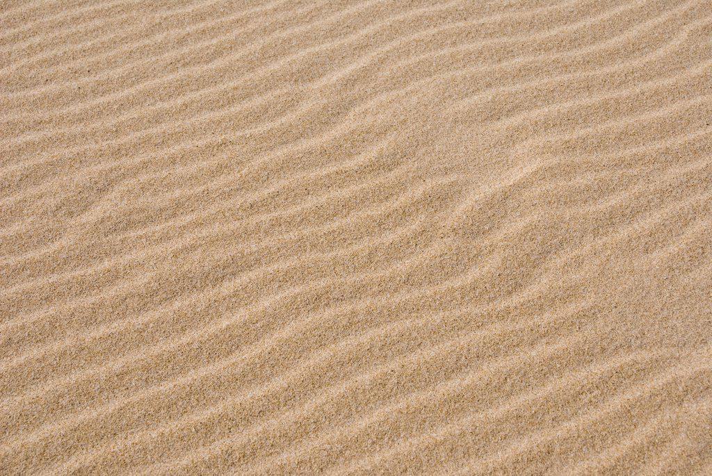 Italy, Sardinia, Sand, full frame : Stock Photo