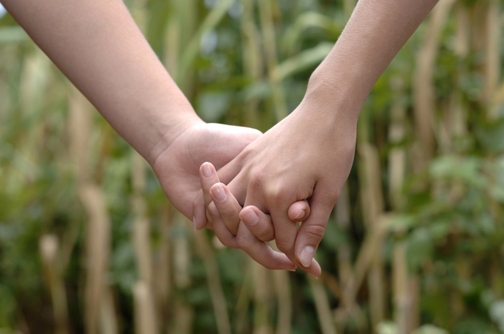 Stock Photo: 1815R-4205 Holding hands, close-up