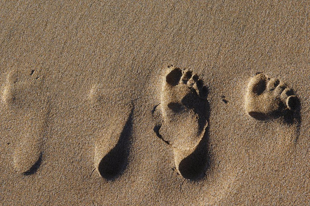 Footprints in sand, elevated view : Stock Photo