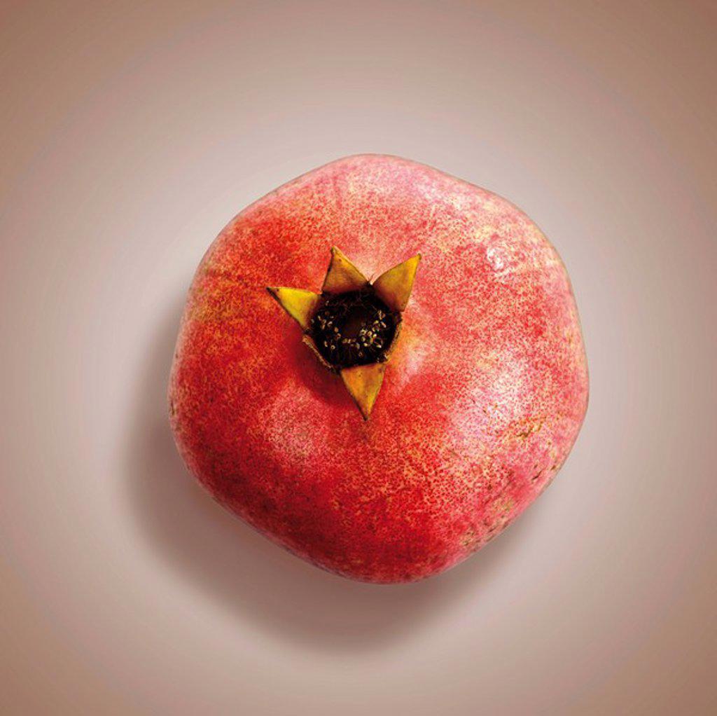 Pomegranate Punica granatum, elevated view : Stock Photo