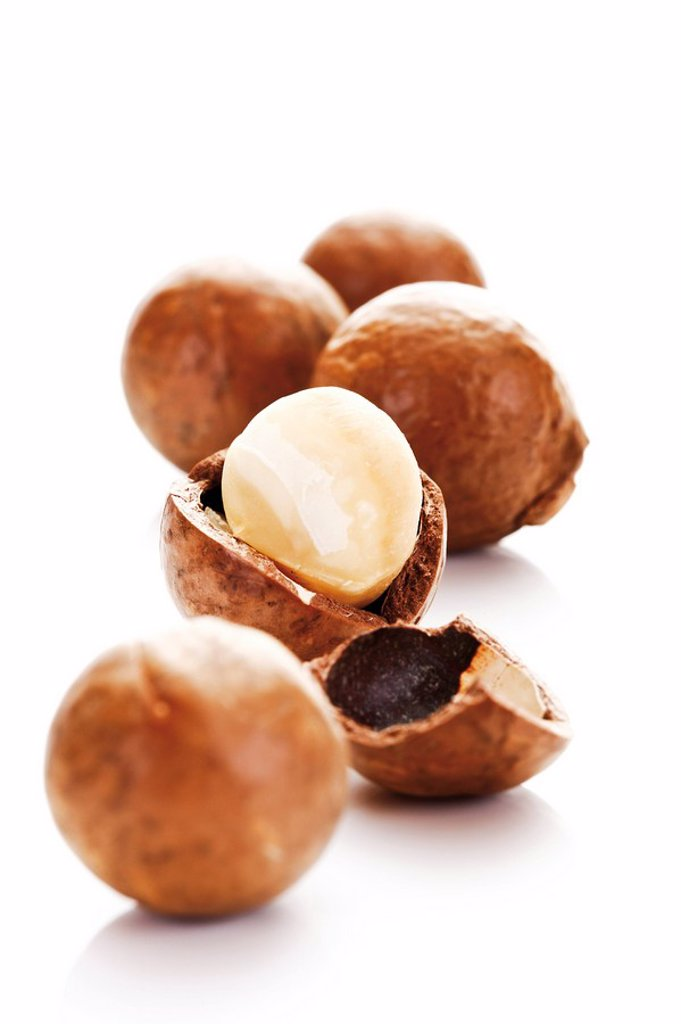 Macadamia nuts : Stock Photo