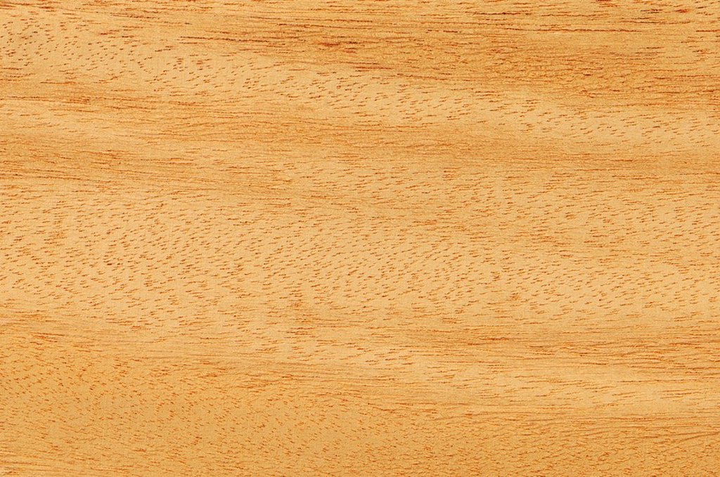 Wood surface, Opepe wood  Nauclea Trillesii full frame : Stock Photo