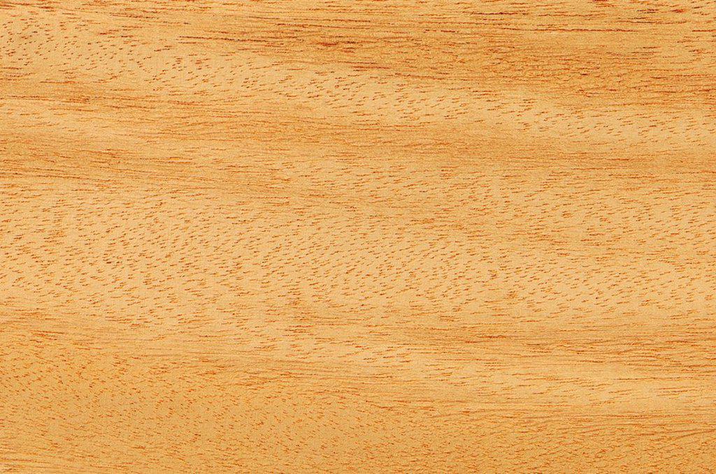 Stock Photo: 1815R-54404 Wood surface, Opepe wood  Nauclea Trillesii full frame