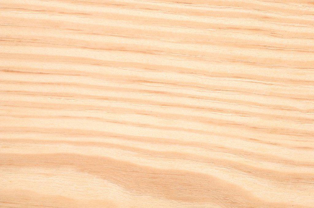 Wood surface, Pitch Pine wood Pinus palustris full frame : Stock Photo