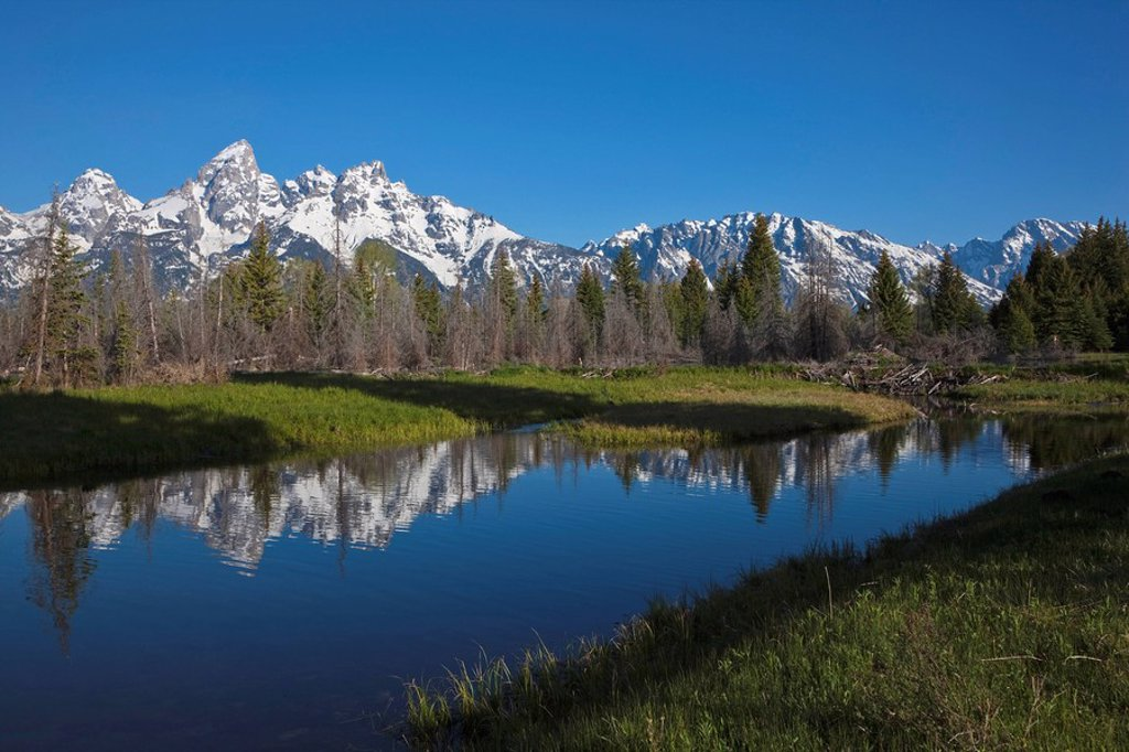USA, Wyoming, Snake River, in background Teton mountains : Stock Photo