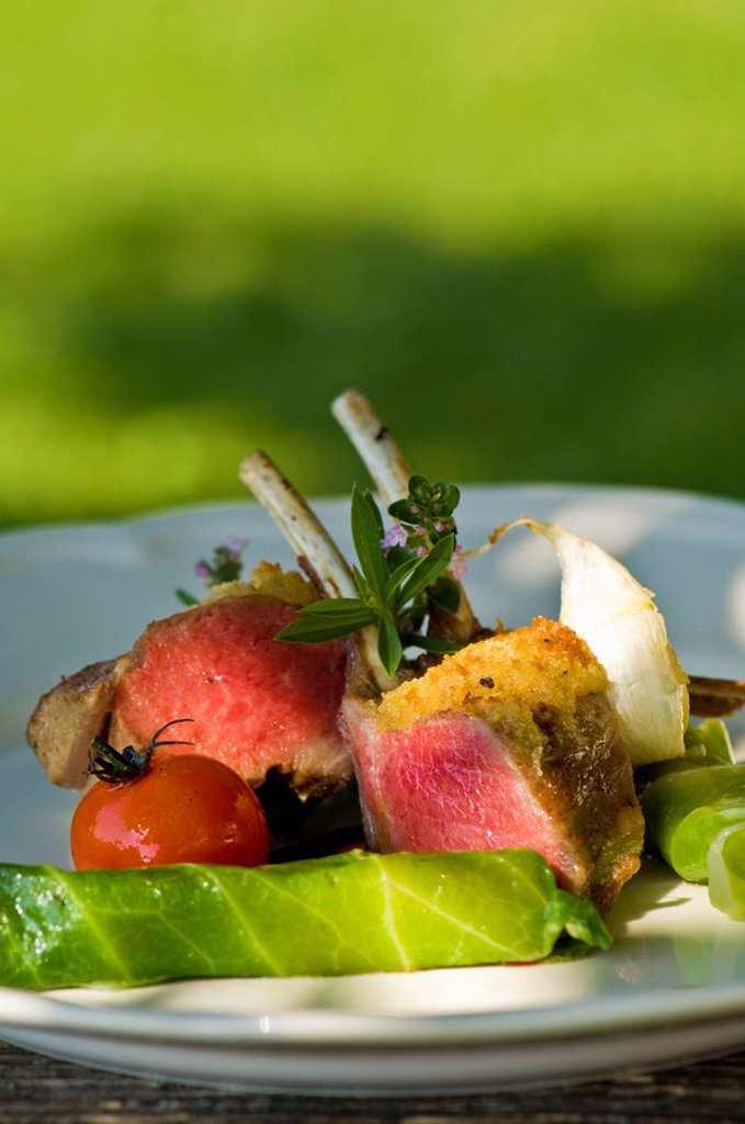 Saddle of venison with salad and tomato on plate, close_up : Stock Photo