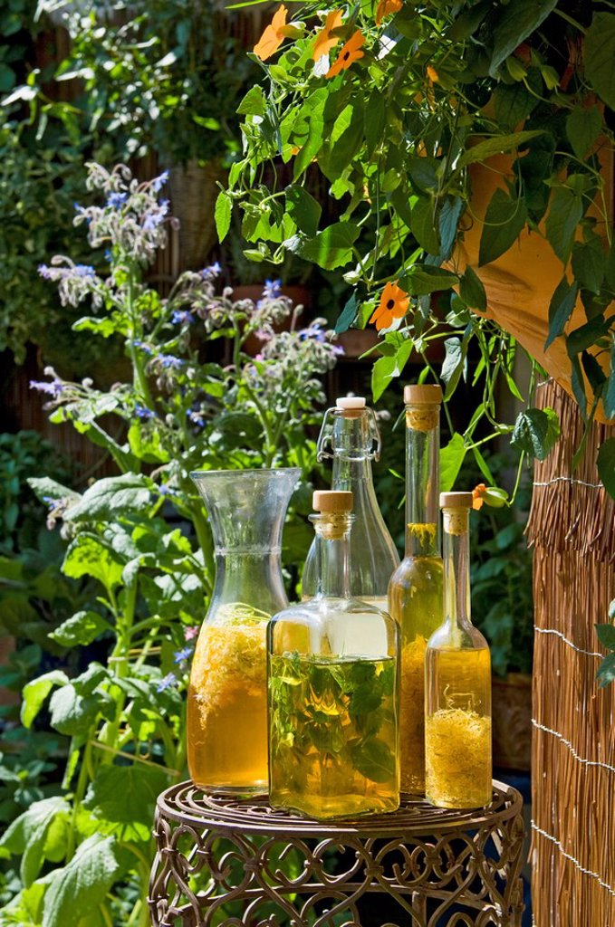 Stock Photo: 1815R-56257 Austria, Salzburger Land, Different bottles with vinegar and oil plced on side table in garden