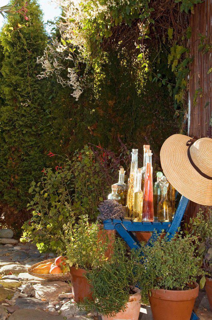 Austria, Salzburger Land, Herb garden, Variety of bottles and herbs : Stock Photo