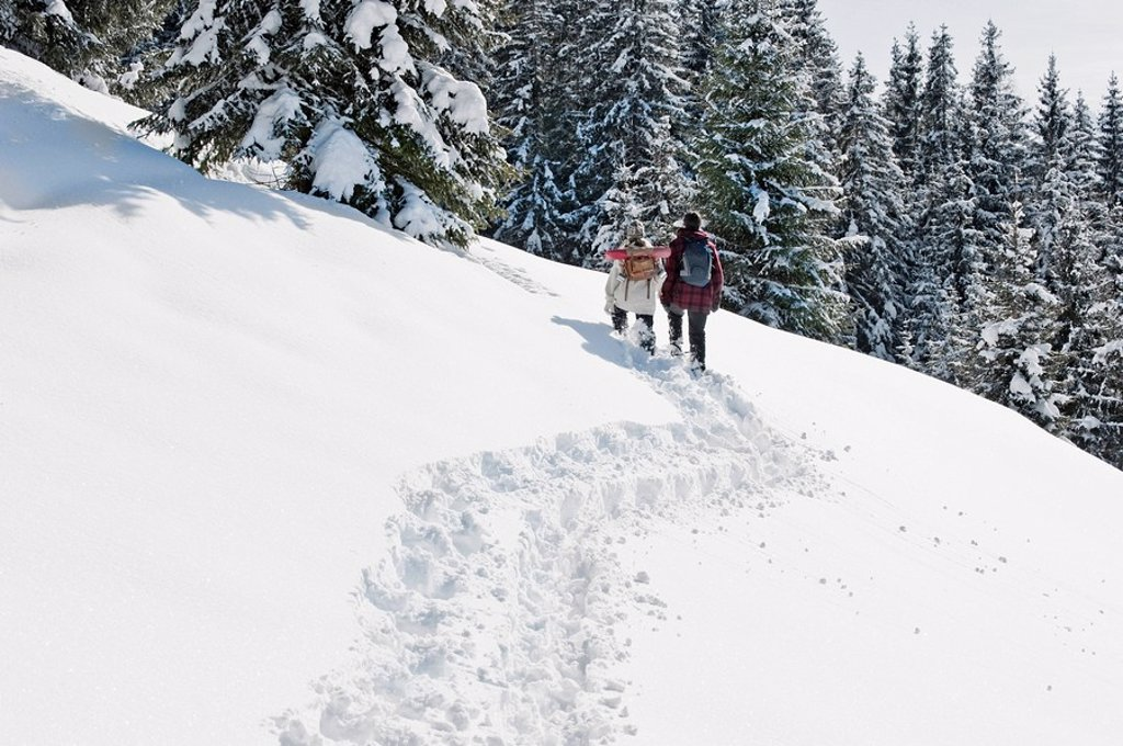 Stock Photo: 1815R-56427 Austria, Salzburger Land, Hikers in snowy landscape
