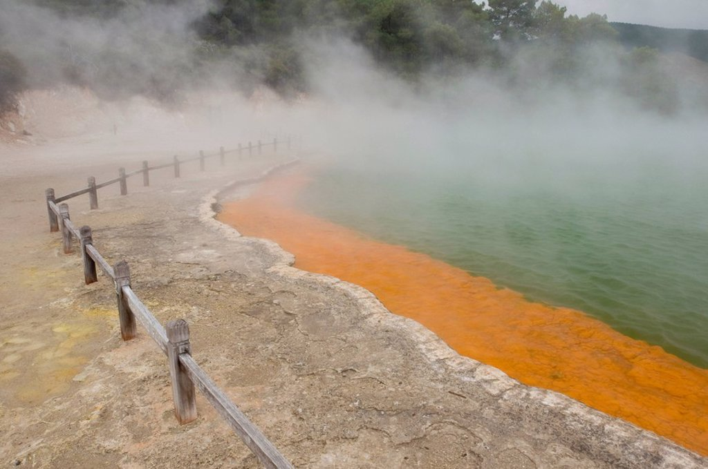 Stock Photo: 1815R-61131 New Zealand, Thermal Wonderland, Champagne Pool, Hot Springs