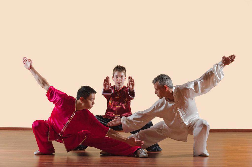 Stock Photo: 1815R-64915 Kung Fu, Changquan, Pubu cuanzhang, Mabu shuang tuizhang, Long Fist Style, Persons practicing martial arts