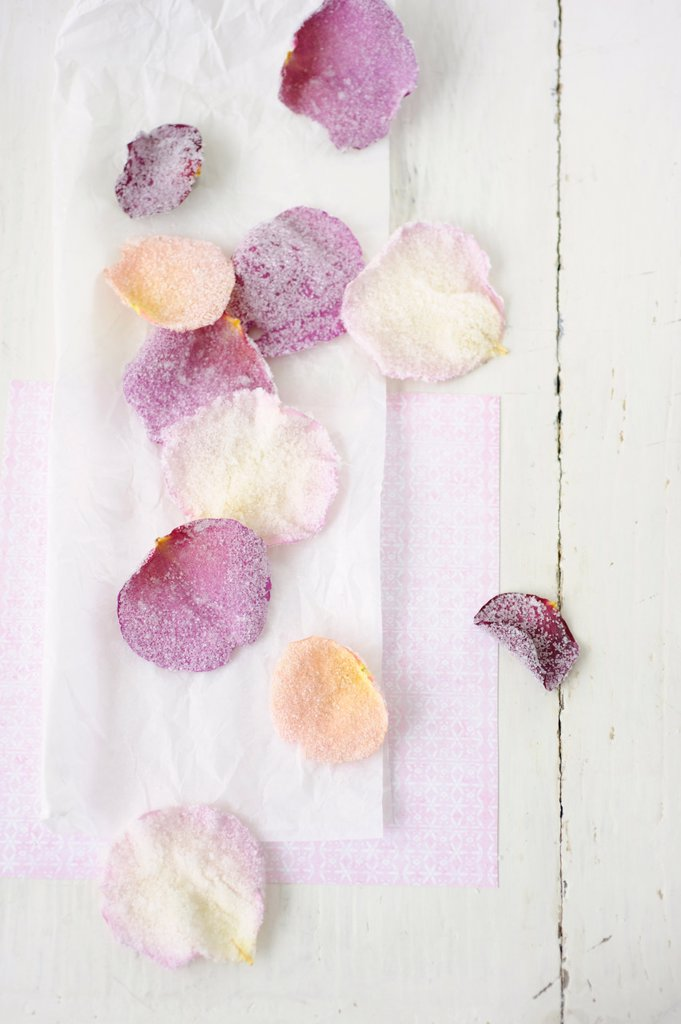 Stock Photo: 1815R-69119 Sugared rose petals on wax paper, close up