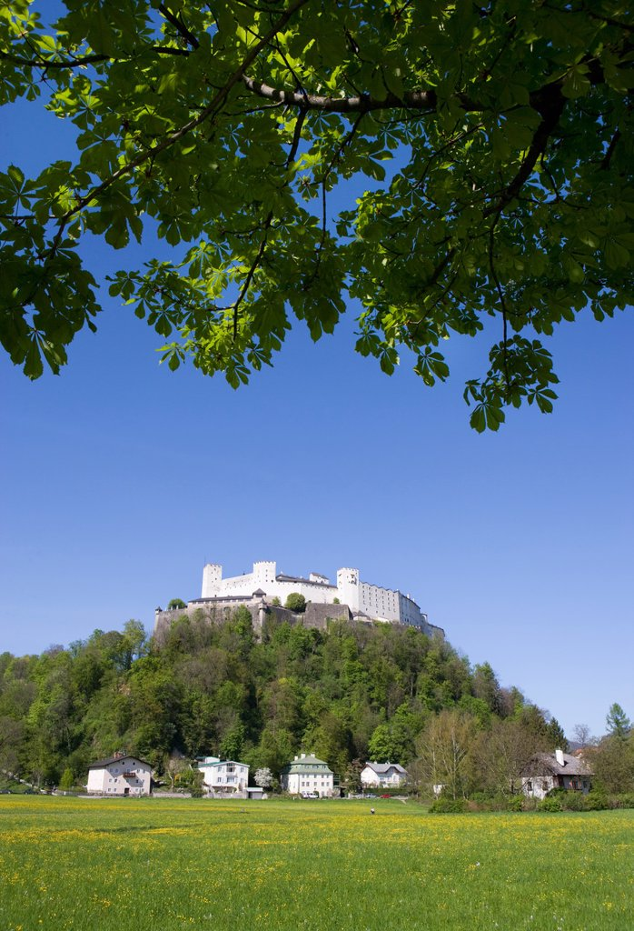 Stock Photo: 1815R-73528 Austria, Salzburg, Festung Hohensalzburg, View of Hohensalzburg castle against blue sky