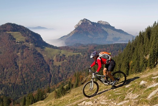 Austria, Tirol, Female mountain biker biking on spitzstein mountain : Stock Photo