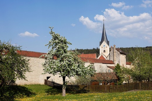 Stock Photo: 1815R-83879 Germany, Bavaria, Upper Palatinate, Berching, View of city wall with blooming apple tree