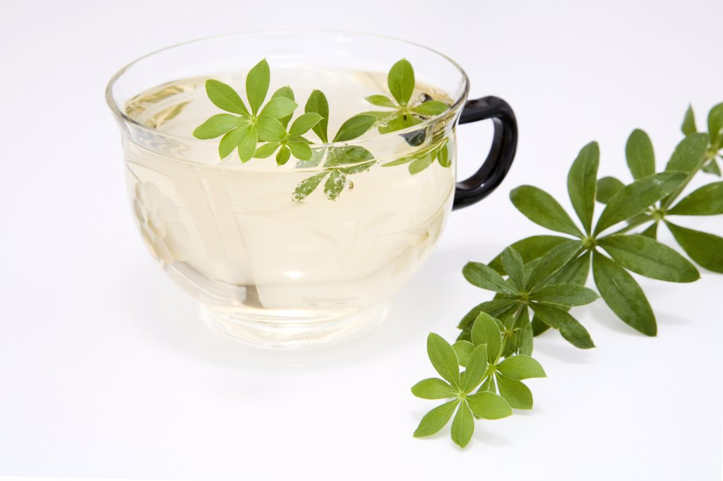 Woodruff in cup of sparkling water : Stock Photo