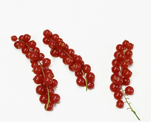 Red currants on white background : Stock Photo