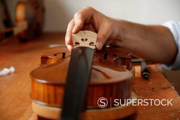 Stock Photo: 1815R-95161 Germany, Upper Bavaria, Schaeftlarn, Violin maker making violin, close up