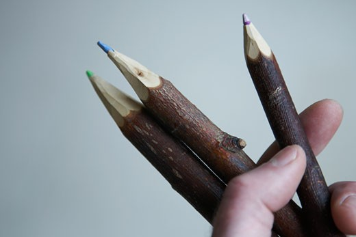 Stock Photo: 1817R-160 Hand holding twig shaped pencil crayons