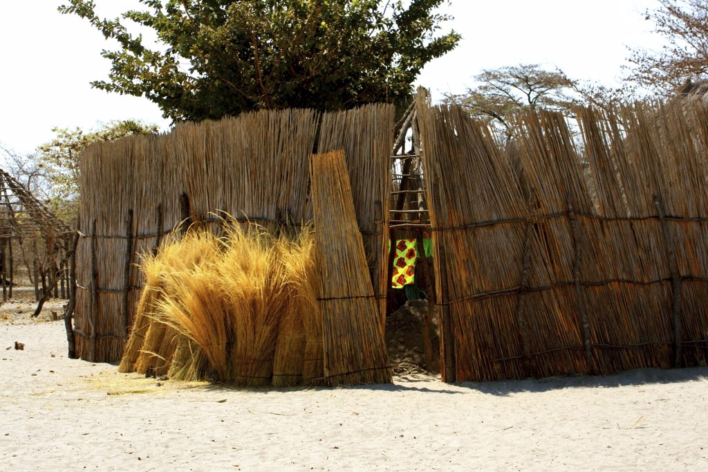 Stock Photo: 1818-208 Thatched fence in a village, Caprivi Strip, Namibia