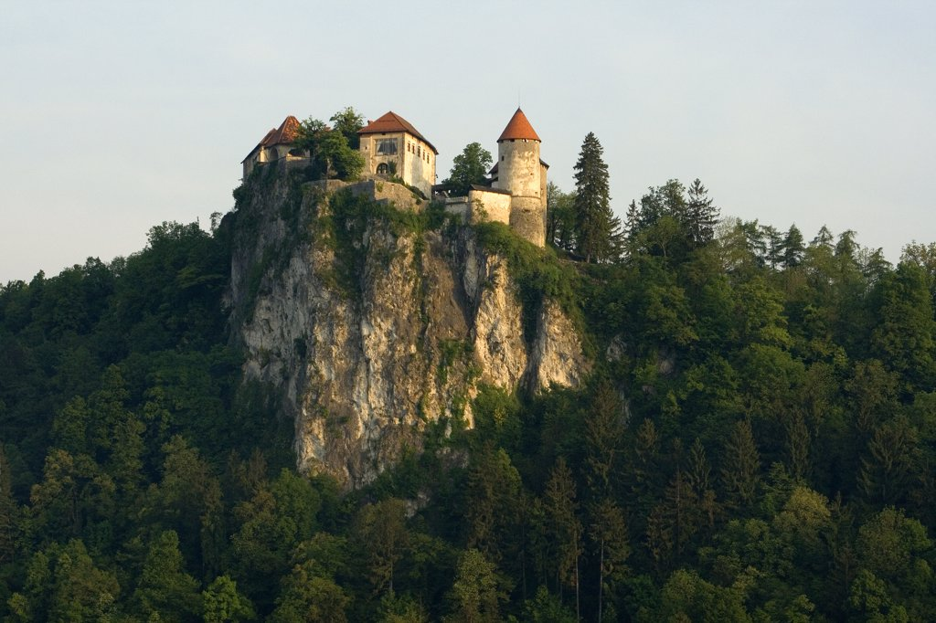 Castle on a cliff, Bled Castle, Lake Bled, Bled, Slovenia : Stock Photo