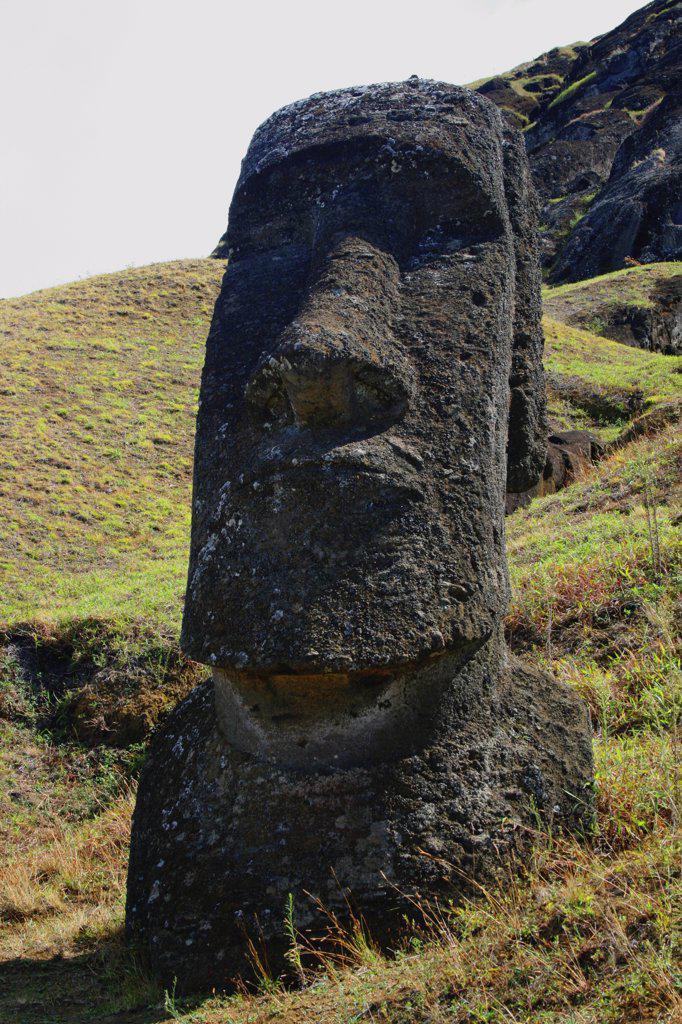 Moai statue, Rano Raraku, Ahu Tongariki, Easter Island, Chile : Stock Photo