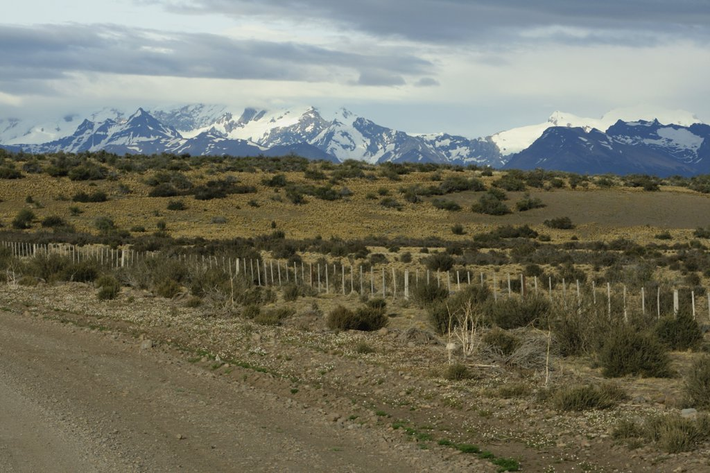 Field with mountains in the background, Pampas, Argentina : Stock Photo