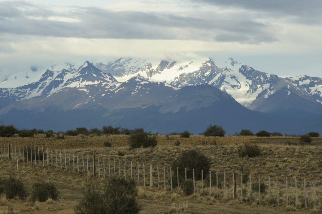 Stock Photo: 1818-322 Field with mountains in the background, Pampas, Argentina