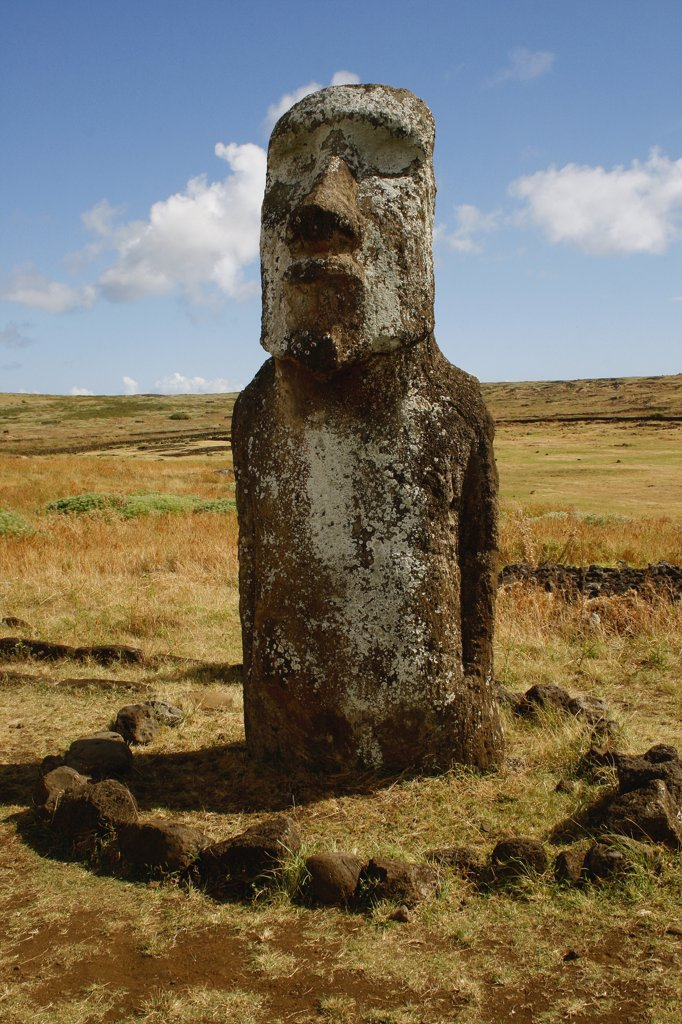Stock Photo: 1818-364 Moai statue in a field, Rano Raraku, Ahu Tongariki, Easter Island, Chile