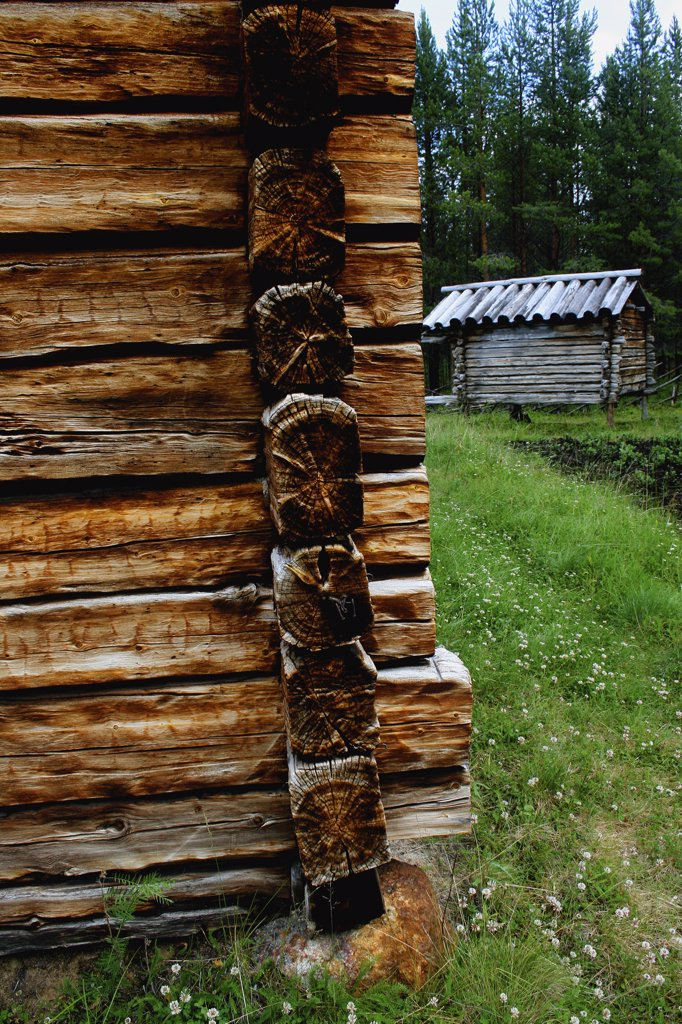 Stock Photo: 1818-381 Log cabin in a forest