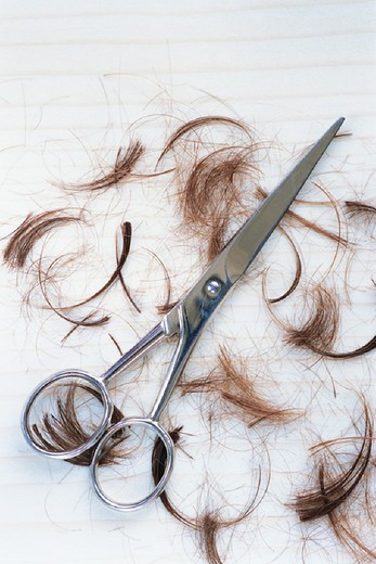 Hair clippings with scissors : Stock Photo