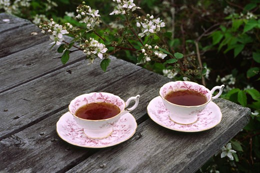 Tea Cups on Picnic Table    : Stock Photo