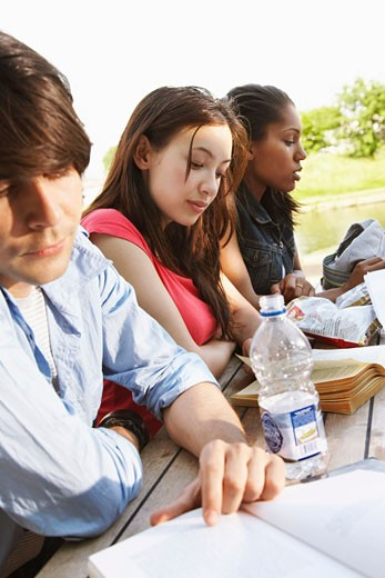 Students Working Outdoors    : Stock Photo