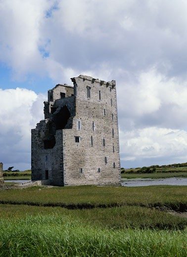 Carrigafoyle Castle, Ballylongford, Ireland    : Stock Photo