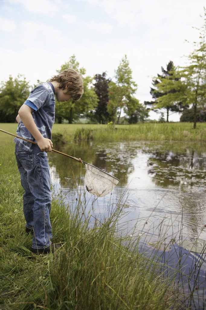 Boy Fishing in Pond    : Stock Photo
