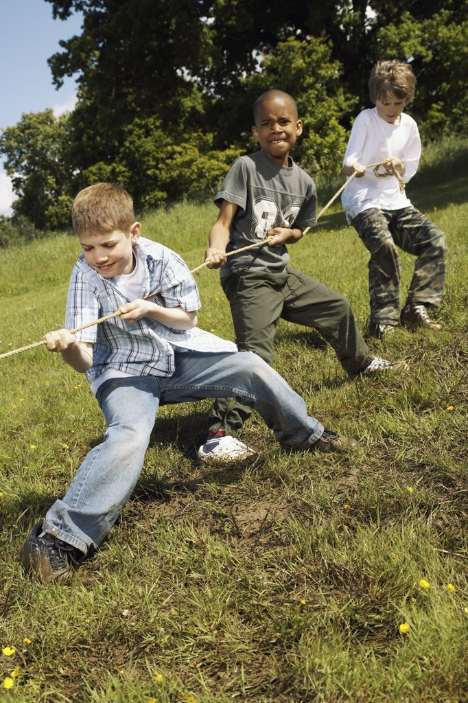 Stock Photo: 1828R-17948 Boys Playing Tug-of-War